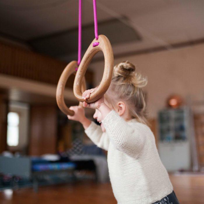 Lillagunga Gymnastic Rings