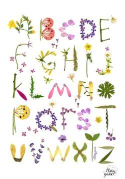 floral abc print